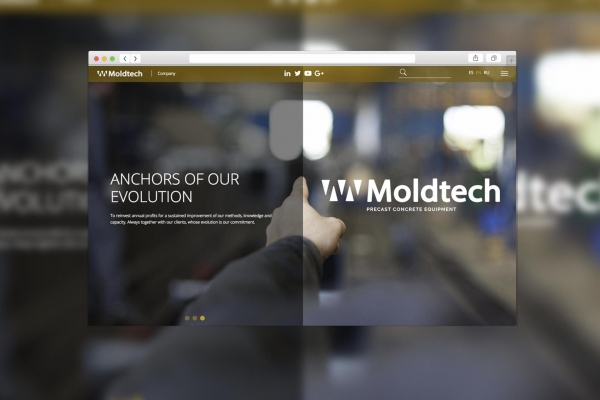 Website Moldtech