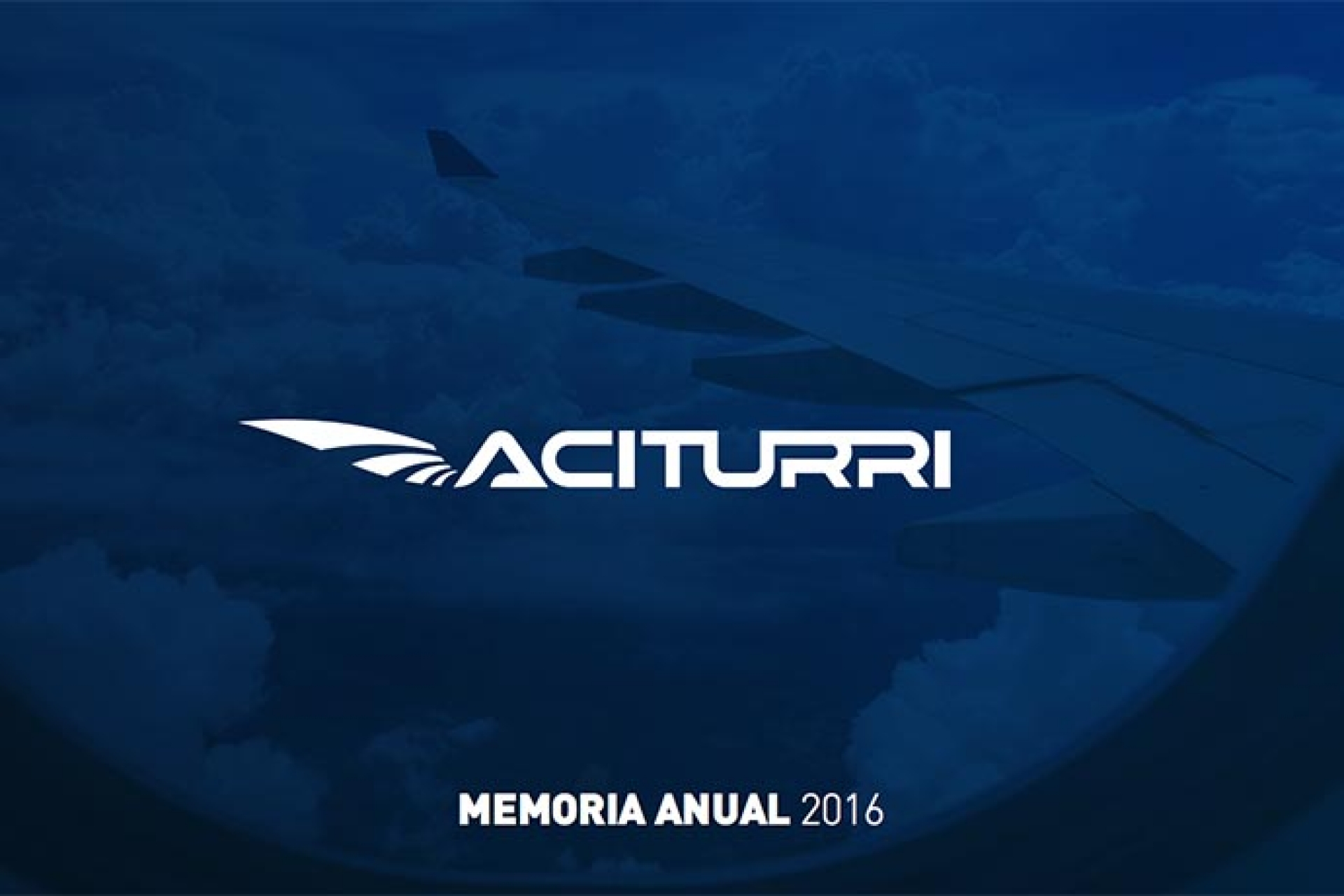 Annual report for Aciturri